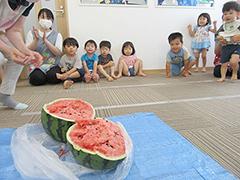 スイカを食べる園児の写真